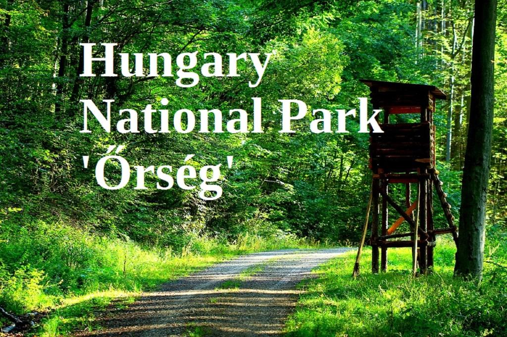 Vendégház az Őrségi Nemzeti Parkban, a Vadása-tó mellett. Egész évben nyitva .ninszianna@gmail.com +36 30 732 7258